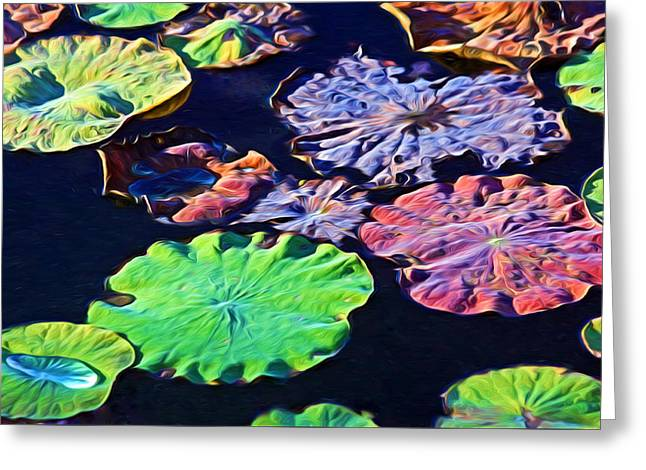 Lilly Pad Greeting Cards - The Last Hurrah Greeting Card by HH Photography of Florida