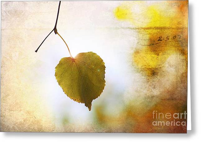 Backlit Prints Greeting Cards - The Last Leaf Greeting Card by Nishanth Gopinathan