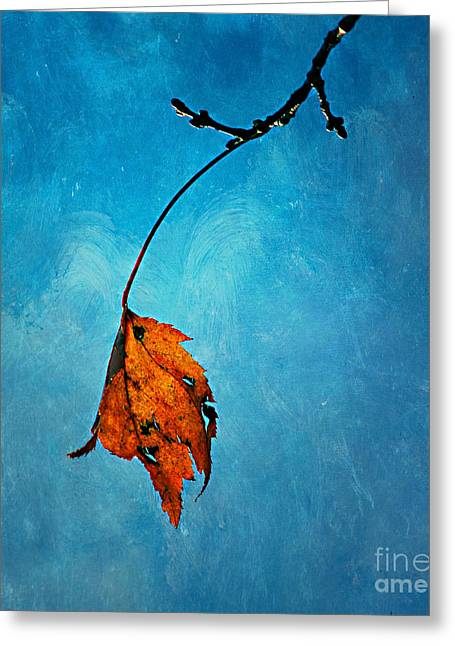 Alone Digital Art Greeting Cards - The Last One Greeting Card by Darren Fisher