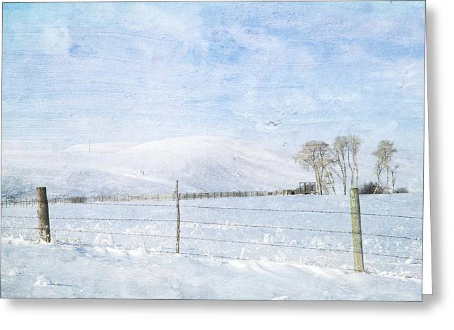 Hoar Frost Greeting Cards - The Last Season Greeting Card by Theresa Tahara