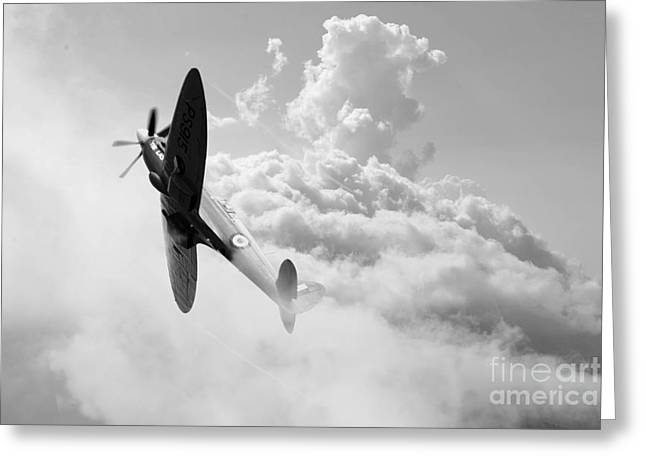 Recon Greeting Cards - The Last Spitfire Greeting Card by J Biggadike