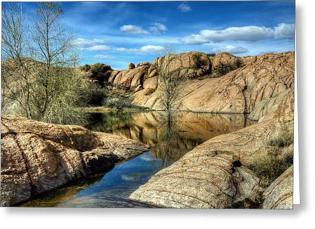 Willow Lake Greeting Cards - The last Stop Greeting Card by Thomas  Todd