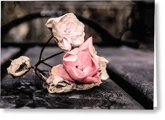 Finishing Greeting Cards - The last wilted roses Greeting Card by Toppart Sweden