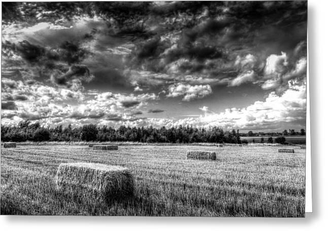Making Hay Greeting Cards - The Late Summer Farm Greeting Card by David Pyatt