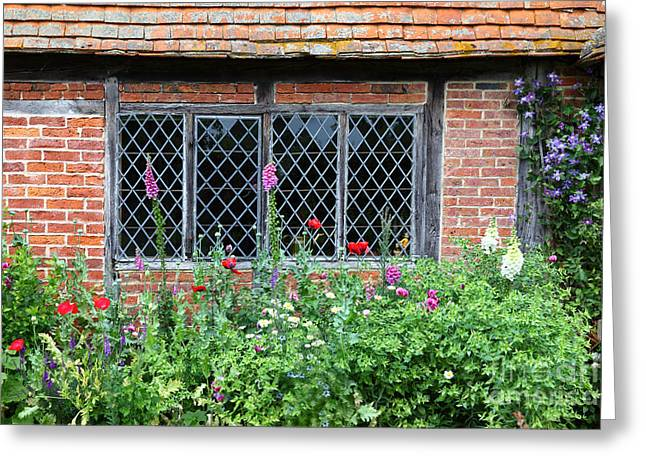 Foxglove Flowers Greeting Cards - The Lattice Window Greeting Card by James Brunker
