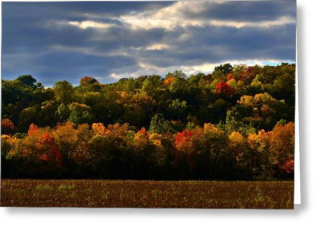 Julie Riker Dant ography Photographs Greeting Cards - The Layers of Autumn Greeting Card by Julie Dant