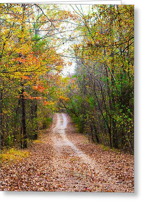 Jogging Greeting Cards - The Leaves of Autumn Greeting Card by Parker Cunningham