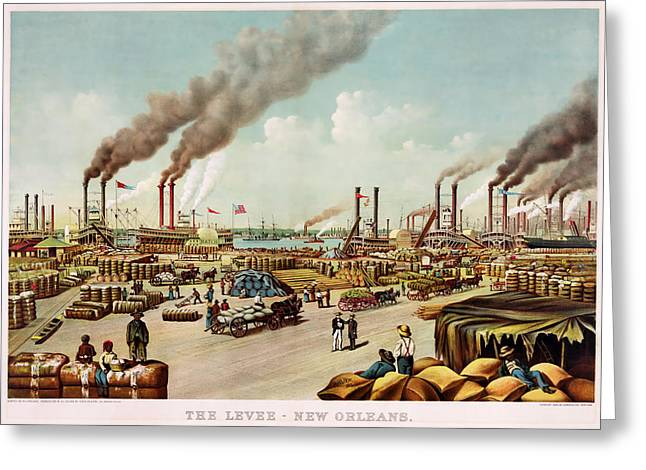1880s Greeting Cards - The Levee of New Orleans Greeting Card by Currier and Ives