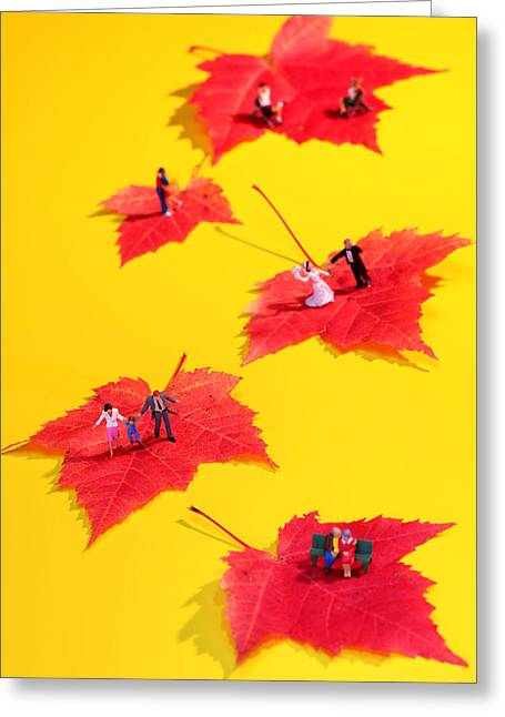 Creative People Greeting Cards - The Life little people big worlds Greeting Card by Paul Ge