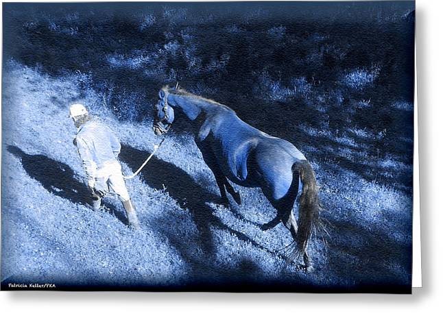 Patricia Keller Greeting Cards - The Light and Shadows of A Man and His Horse Greeting Card by Patricia Keller
