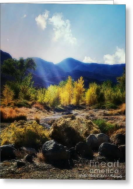 Touched By Light Greeting Cards - The Light  Greeting Card by Bobbee Rickard