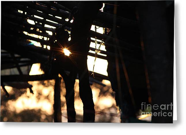 Bamboo House Greeting Cards - The light finds its way Greeting Card by Four Hands Art