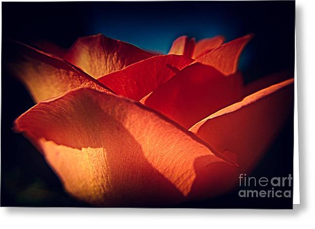 Inner Self Photographs Greeting Cards - The Light of Love Greeting Card by Patricia Trudell