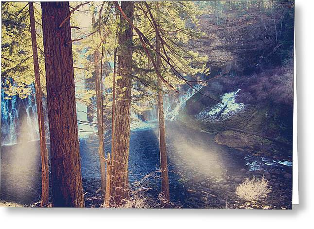 Waterfall Greeting Cards - The Light of My Life Greeting Card by Laurie Search