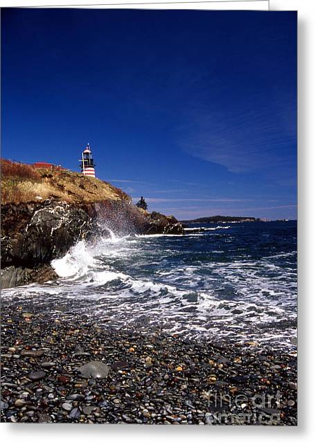 Maine Beach Greeting Cards - The Ligthouse At West Quoddy Greeting Card by Skip Willits