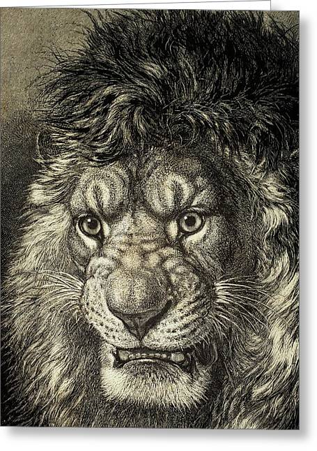 Lion Illustrations Greeting Cards - The Lion, King Of Beasts, From El Mundo Ilustrado, Published Barcelona, 1880 Litho Greeting Card by European School