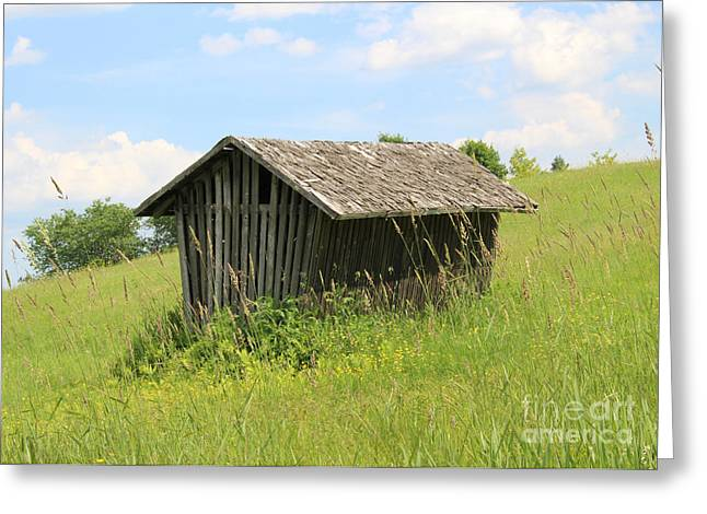 Old Maine Barns Digital Greeting Cards - The Little Barn  Greeting Card by Cheryl Aguiar