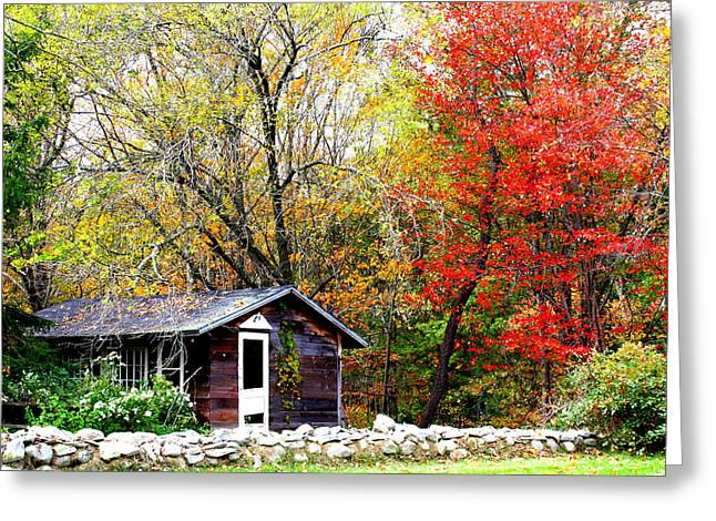 The Houses Greeting Cards - The Little Country Cottage Greeting Card by  Photographic Art and Design by Dora Sofia Caputo