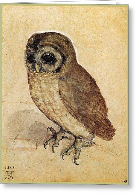 Owl Picture Greeting Cards - The Little Owl 1508 Greeting Card by Albrecht Durer