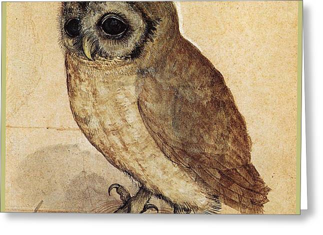 The Little Owl 1508 Greeting Card by Albrecht Durer