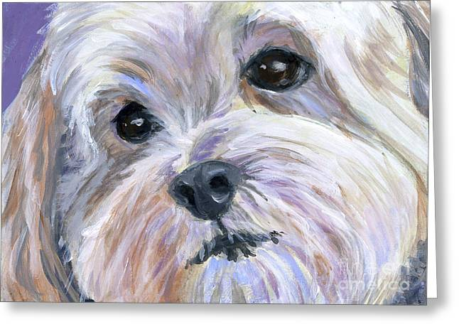 Havanese Greeting Cards - The Little White Dog Greeting Card by Hope Lane