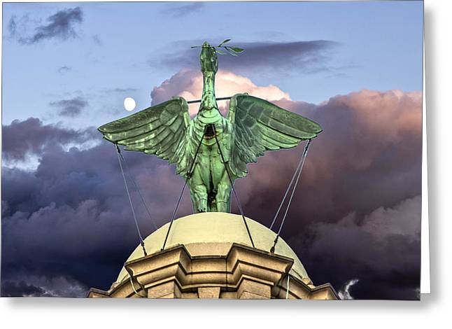 Liver Greeting Cards - The Liver Bird Greeting Card by Paul Madden