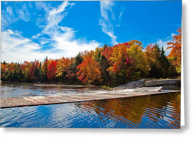Old And New Greeting Cards - The Lock and Dam in the Fall Greeting Card by David Patterson
