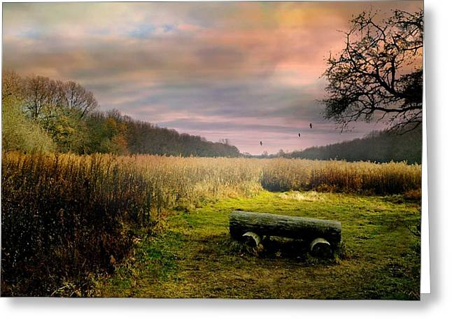 Westchester County Greeting Cards - The Log Bench Greeting Card by Diana Angstadt