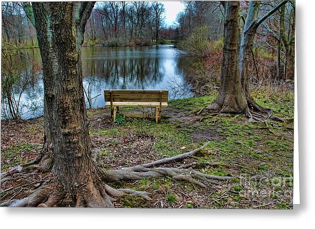 Quite Greeting Cards - The Lone Bench Greeting Card by Paul Ward