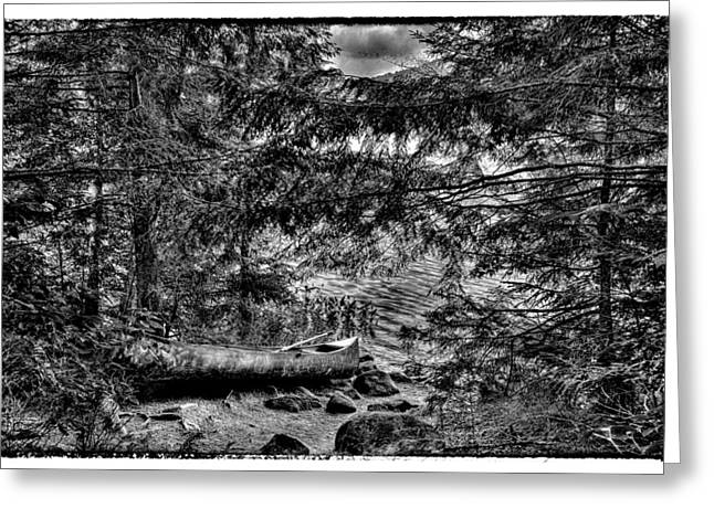 Canoe Greeting Cards - The Lone Canoe on Bubb Lake Greeting Card by David Patterson