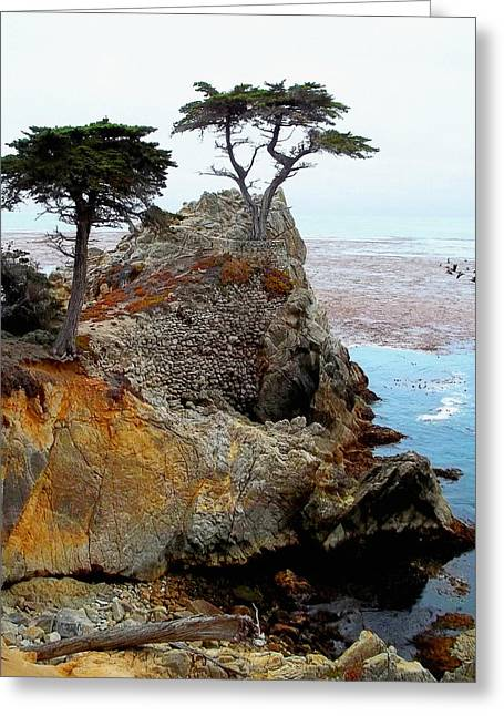 The Lone Cypress Greeting Cards - The Lone Cypress - Pebble Beach Greeting Card by Glenn McCarthy Art and Photography