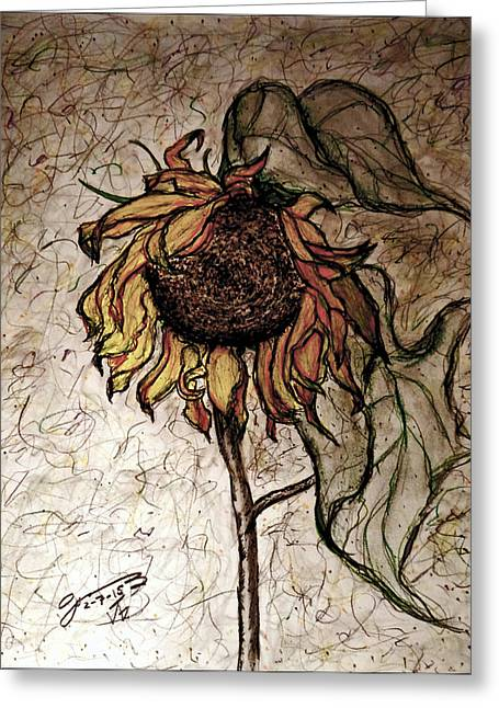 Pa Drawings Greeting Cards - The Lone Sunflower III Greeting Card by Jose A Gonzalez Jr