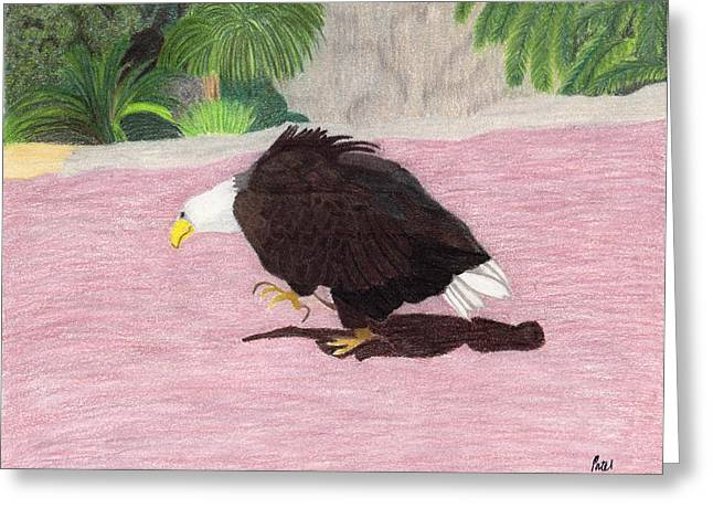 Bald Eagle Pastels Greeting Cards - The Lonely Eagle Greeting Card by Bav Patel