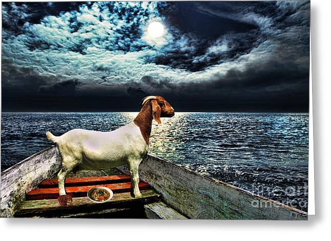 Reserve Greeting Cards - The Lonely Goat Greeting Card by Milan Karadzic