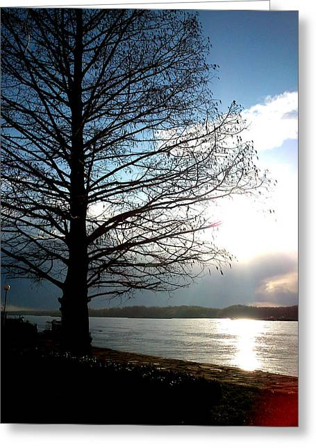 Best Sellers -  - Lucy D Greeting Cards - The Lonely Tree Greeting Card by Lucy D