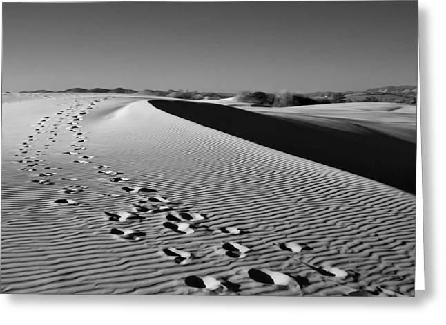 Sand Dunes Digital Greeting Cards - The Long Walk Greeting Card by Lynn Andrews