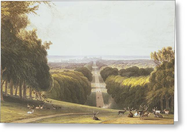 Formal Greeting Cards - The Long Walk, Windsor Park Greeting Card by William Daniell