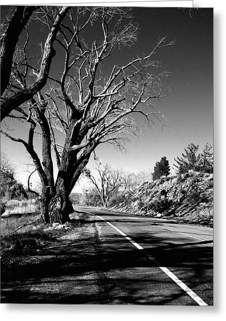 Best Sellers -  - Old Roadway Greeting Cards - The Long Way Around  Greeting Card by Glenn McCarthy Art and Photography