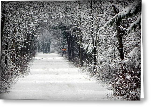 Annapolis Valley Greeting Cards - The long way home Greeting Card by Karen Cook