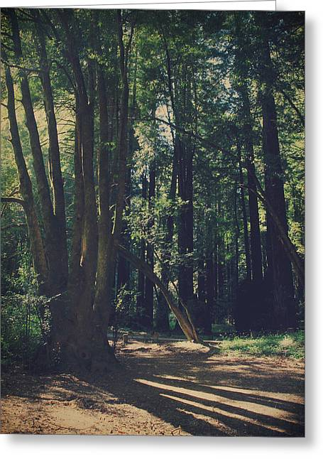 Long Shadows Greeting Cards - The Long Way Greeting Card by Laurie Search