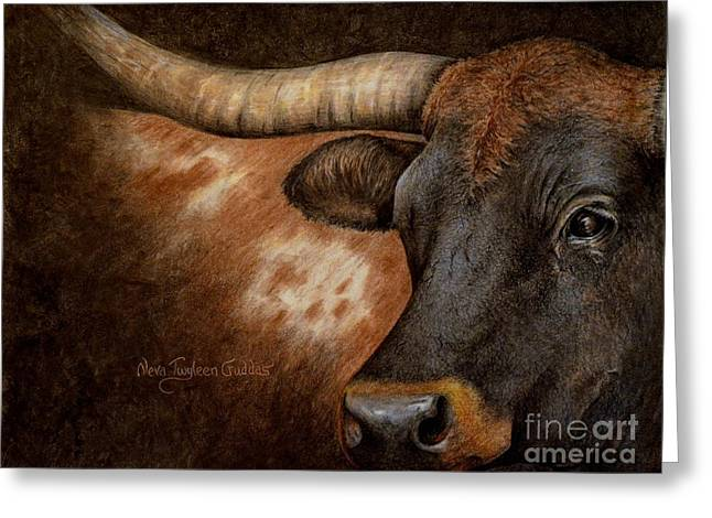 Recently Sold -  - Steer Greeting Cards - The Longhorn Greeting Card by Neva Cruddas