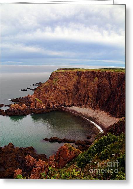 Bay Of Fundy Greeting Cards - The Look Out... Greeting Card by Nina Stavlund