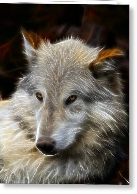 Preditor Greeting Cards - The Look Greeting Card by Steve McKinzie