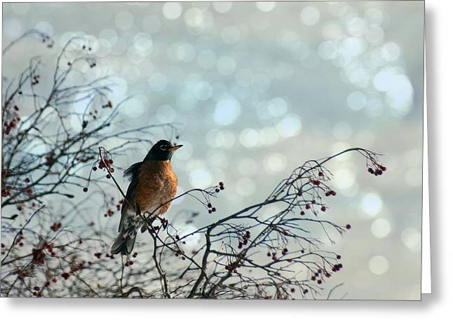 The Lookout Greeting Card by Diane Miller