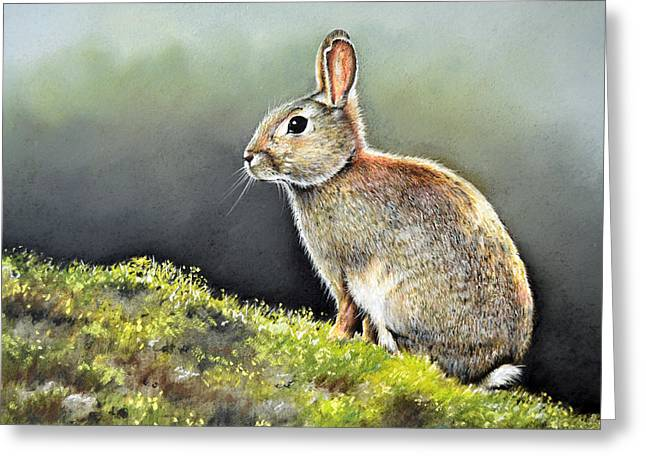 Rabbit Pastels Greeting Cards - The Lookout Greeting Card by Paul Dene Marlor