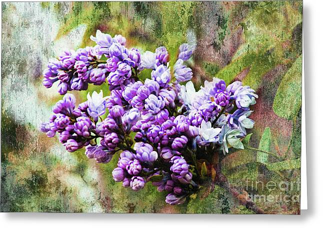 Fresh Green Mixed Media Greeting Cards - The Lovely Lilac Greeting Card by Andee Design