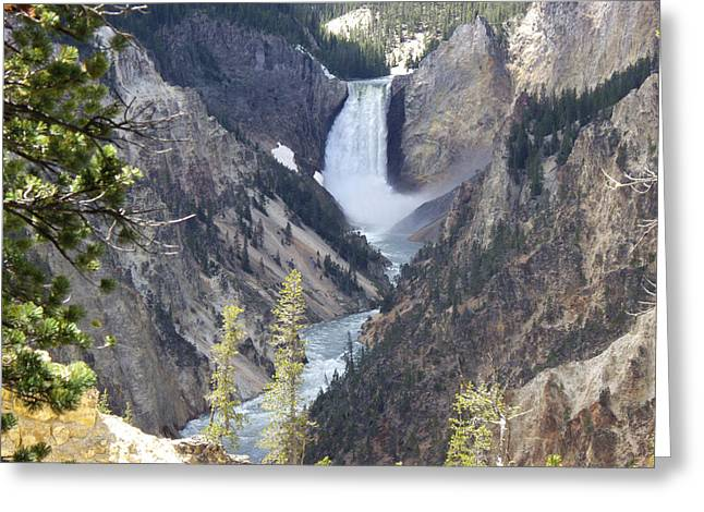 River Rafting Art Print Greeting Cards - The Lower Falls of Yellowstone River Greeting Card by Barbara Dalton