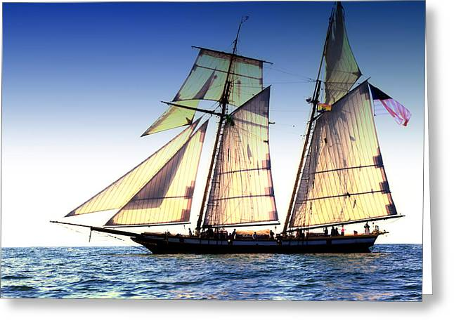 Historic Schooner Greeting Cards - The Lynx Greeting Card by Bryan Davies