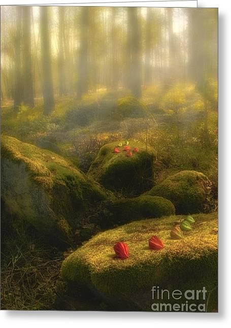 Multicolored Digital Greeting Cards - The Magic Forest Greeting Card by Veikko Suikkanen