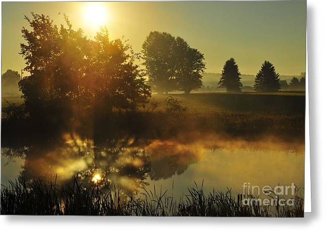 Sun Greeting Cards - The Magic of Nature 4 Greeting Card by Terri Gostola
